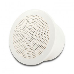 Ceiling speaker 3"